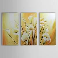 Hand Painted Oil Painting Floral Calla Lily Set of 3 with Stretched Frame 1307-FL0149