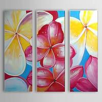 Hand Painted Oil Painting Floral Set of 3 with Stretched Frame 1307-FL0151