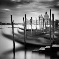 Printed Art Landscape Venice Santa Maria della Salute by Nina Papiorek