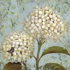 Printed Art Floral Ornament XI by Daphné B.